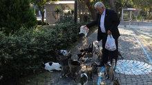 Çanakkale'de bir kişi her sabah 3 bölük kediye içtima alıp besliyor