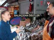 Hafta hafta balık takvimi