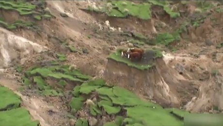 Deprem sonrası ilginç görüntü!