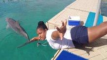 Yunus balıklarıyla 'Mannequin Challenge' yaptılar
