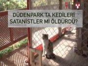 Antalya Düdenpark'ta satanizm şüphesi