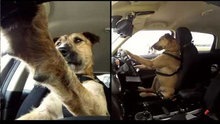 Eğitimlerini aldı, ilk sürüşünü gerçekleştirdi!