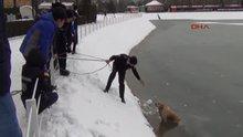 İnegöl Buz tutan gölete düşen köpeği böyle kurtardılar