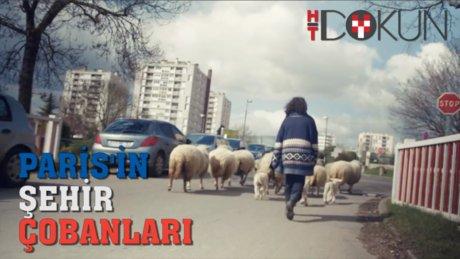 Paris'in Şehir Çobanları