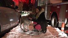 Yangından kurtardığı köpeğine gözyaşlarıyla sarıldı
