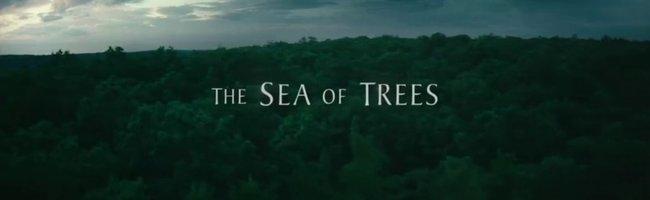 Sonsuzluk Ormanı