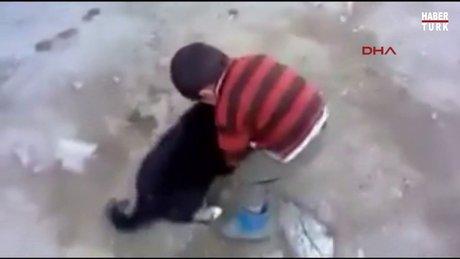 Yavru köpek çocuğu çocuk da onu ısırdı