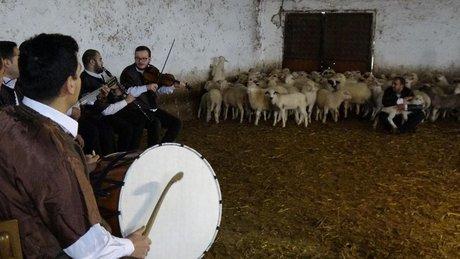 """""""Yabancılar Mozart dinletiyor."""" dedi! Ahırda sıra gecesi verdi"""