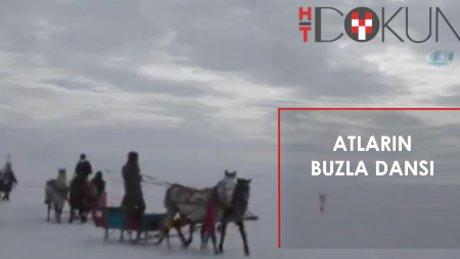 Çıldır Gölü'nde festival: Atlar 30 cm buzda koştu!