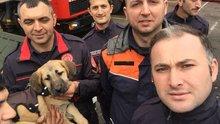 Kuyu köpek ve kurtarıcıları Haber Türk Tv stüdyolarında