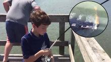 Yakaladığı balığı timsah yedi!