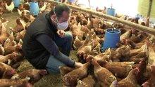 Arkadaşından ödünç aldığı 1 horoz 2 tavuk hayatını değiştirdi!