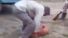 Sosyal medya köpeğe yapılan şiddeti konuşuyor!