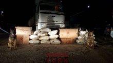 TIR'ın zulasında 286 kilogram esrar yakalandı