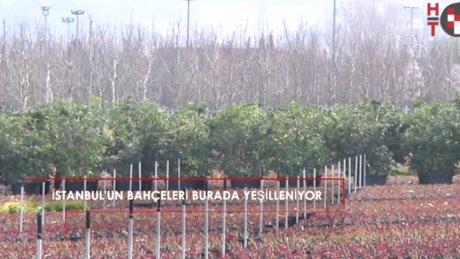 """""""İstanbul'a bir villa bahçesi gibi bakıyoruz"""""""