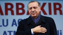 Cumhurbaşkanı Erdoğan: Barışın fedaisi biziz
