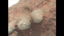 Çin'de 70 milyon yıllık dinozor yumurtası bulundu