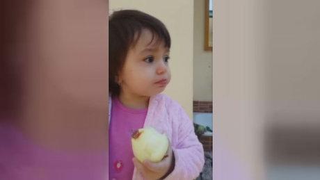 Soğanı elma gibi yedi!