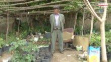35 yıl kahvehane işleten Kasım Kaya, huzuru çiçeklerde buldu