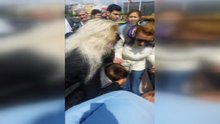 Taksim'de bebeğin dili boğazına kaçtı, vatandaşlar seferber oldu