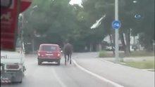 Atı aracının arkasına bağlayıp sürükledi