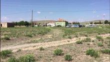 Konya'da cinnet getiren zanlı 5 kişiyi öldürdü
