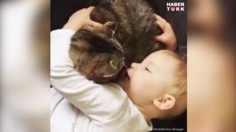 Rahatsızlanan kedisini böyle teselli etti