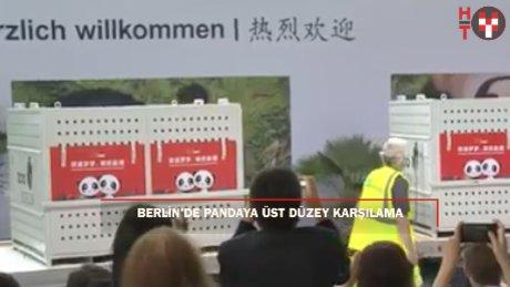Berlin'de pandaya üst düzey karşılama