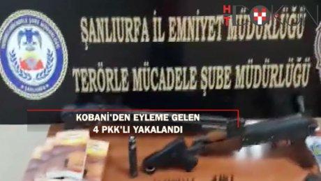 Kobani'den bombalı eyleme gelen 4 PKK'lı yakalandı