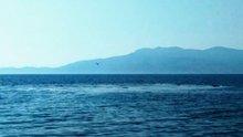 Çanakkale Ayvacık'ta denizde korkutan görüntü kamerada!