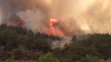 İzmir'deki makilik ve orman yangını