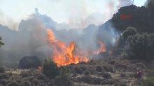 Bodrum'da yangın yerleşim alanlarına doğru ilerliyor