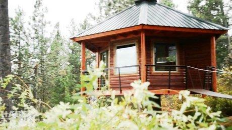 İki arkadaş 6 ay uğraşarak ağaç ev inşa etti