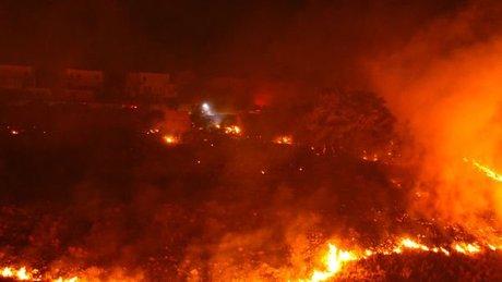 Muğla'nın Bodrum ilçesinde yeşillik alanda yangın çıktı