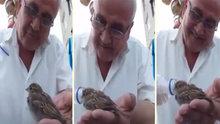 Susamış kuşa şişeyle su içiren amca izlenme rekoru kırıyor