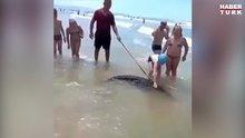 Evcil timsahıyla sahilde turladı
