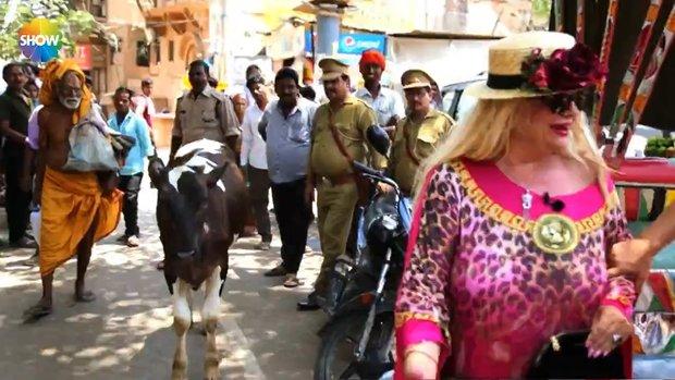 Banu Alkan ve Safiye Soyman Hindistan sokaklarında inekten korktu