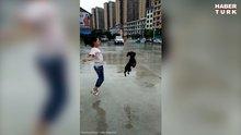 Sahibiyle birlikte ip atlayan yetenekli köpek