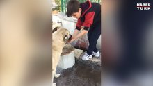 Sıcak havada susayan köpeğe elleriyle su içiren minik