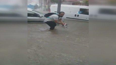 Suların ortasında mahsur kalan kediyi böyle kurtardı