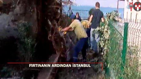 Süper fırtınanın ardından İstanbul: Asırlık çınara veda