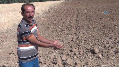 Mardin'in Derecik köyünün toprağı akrep kaçırıyor