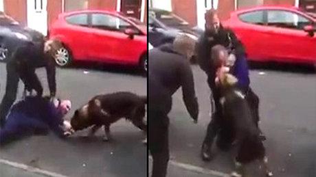 Gözaltına alınacakken polis köpeğini ısırdı