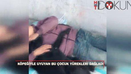 Beşiktaş'ta köpeğe sarılarak uyuyan çocuk yürekleri burktu