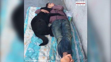 Köpeğe sarılarak uyuyan çocuk görenleri duygulandırdı