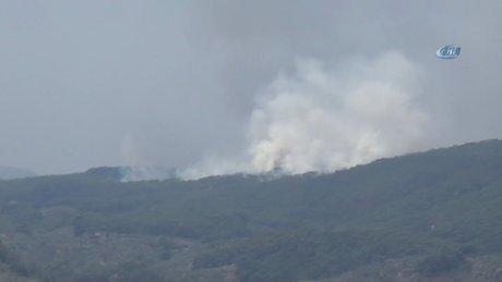 Kazdağları'nda orman yangını