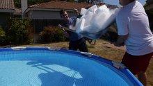 Havuza kuru buz atılırsa ne olur? İşte yanıtı...