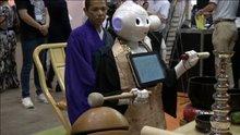 Robot rahip