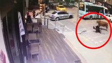 İstanbul Maltepe'te boğanın vurduğu kadının kalçası kırıldı