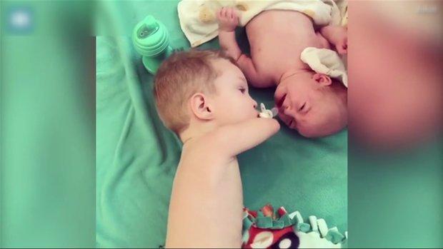 Birbirine Sarılıp Uyuyan Yeni Doğmuş Bebekler
